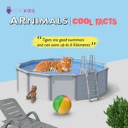 SCIFIKIDS - ARNIMALS New Version Augmented Reality Educational Kit