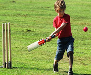 Cricket Turf Manufacturers in Bangalore